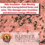 Insulation Removal Contaminated Phoenix AZ